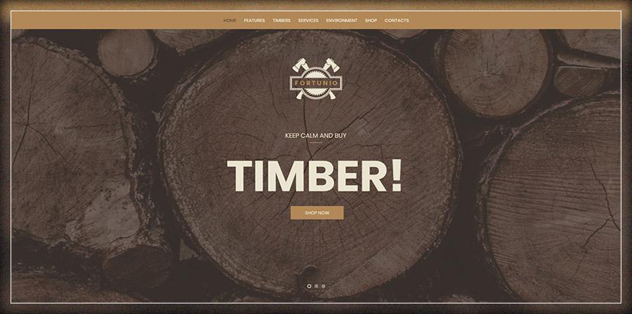 Top 9 mẫu website bán nội thất, đồ gỗ, sàn gỗ đẹp và sang trọng