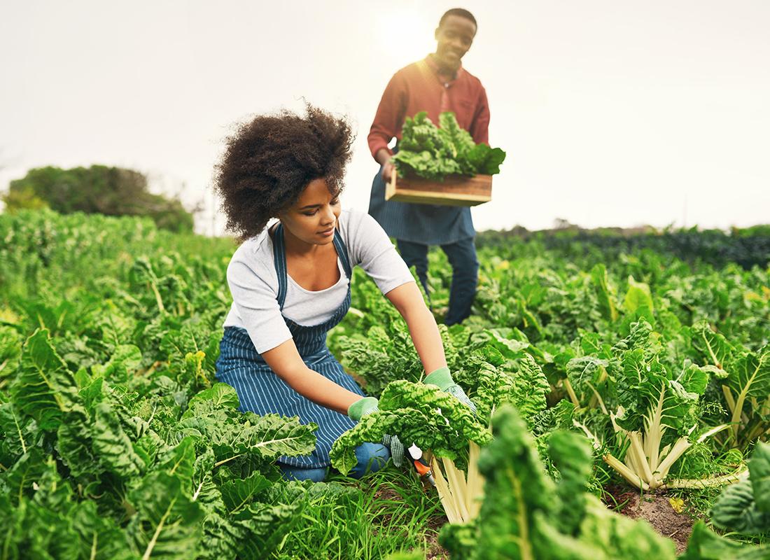 Top 10 mẫu website bán nông sản sạch, sản phẩm nông nghiệp đẹp 2018