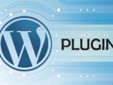 Plug-in là gì ? Các loại plug-in trong WordPress thường gặp