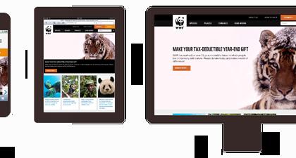 Các phương pháp thiết kế website mobile hiện nay